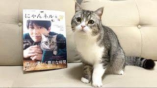 【祝】ついに雑誌デビューを果たした猫がこちらです!【もちまる日記】