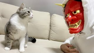 飼い主の顔が鬼になってたときの猫の反応がこちらw【もちまる日記】